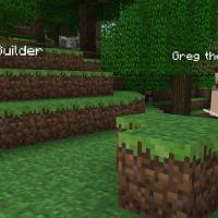 Minecraft Builders, Minecraft NPC Mod