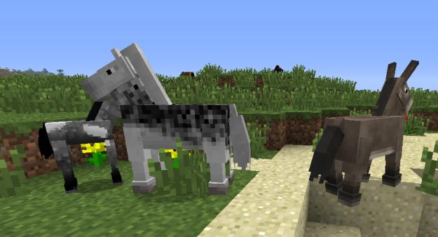 wild minecraft horses