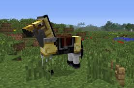 minecraft horse parkpur